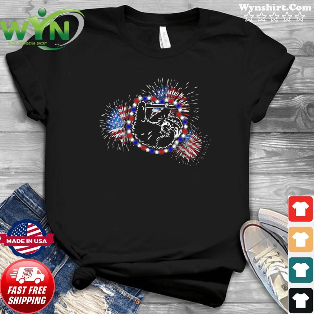 Sloth flag fireworks Sloth lovers American flag 4th of july T-Shirt